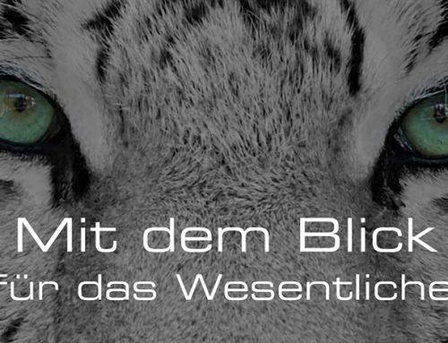 Bönig Medien.group